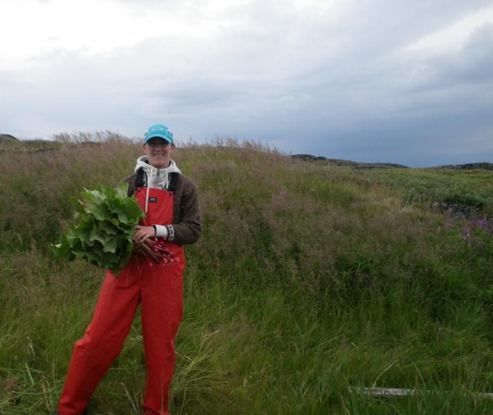 Dr.  Oberndorfer collecting rhubarb for Aunt Annie Evans at Turnaviks (photo by Todd Broomfield)