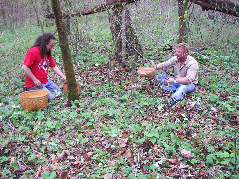 Roger Cain of the United Keetoowah Band and Cherokee Nation shows Justin Nolan a patch of bloodroot on his ancestral lands in rural Adair County, Oklahoma.